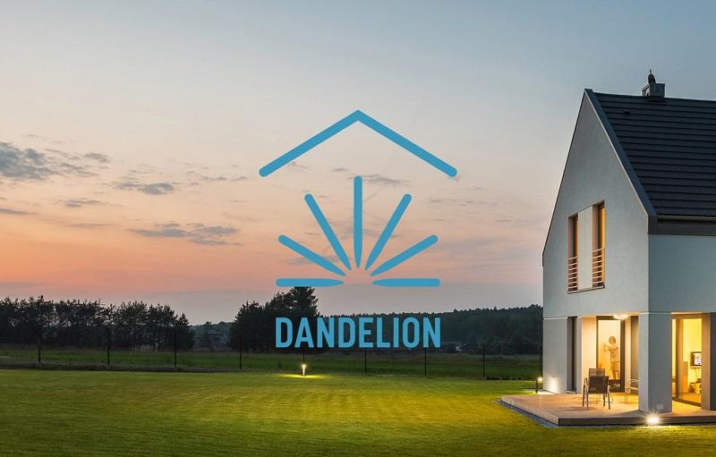 Google Dandelion