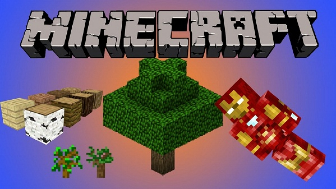 Minecraft Basics For Newbies